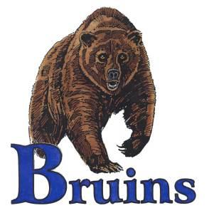Blacksburg-Bruins